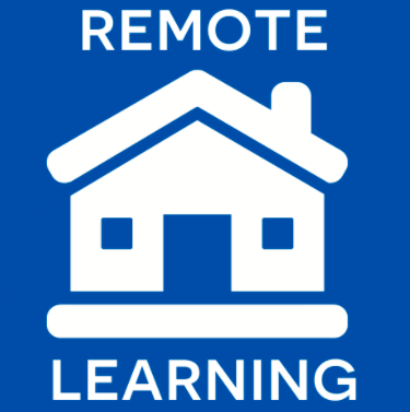 Perspectives From a Year-long Remote Learner